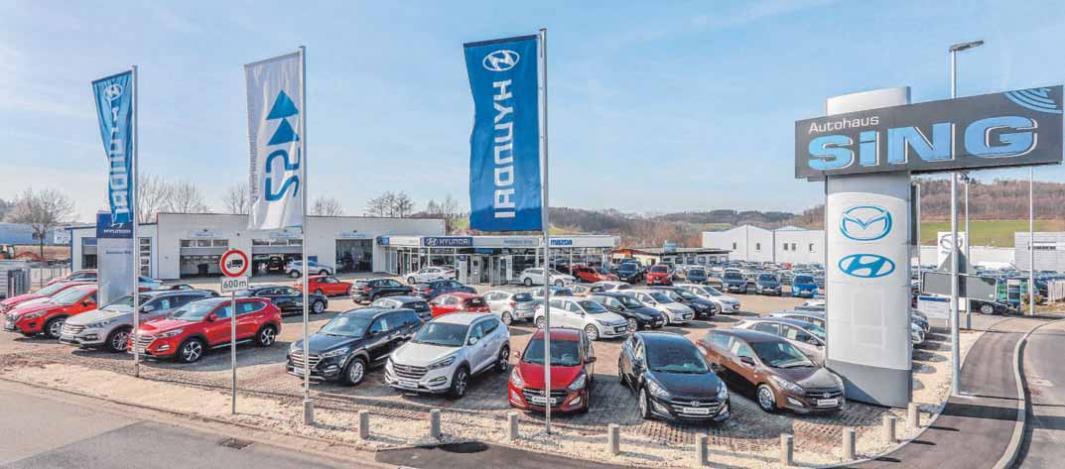 Die Hyundai- und Mazda-Experten von Autohaus Sing beraten heute von 9 bis 16 Uhr. FOTOS: PETER SCHLIPF