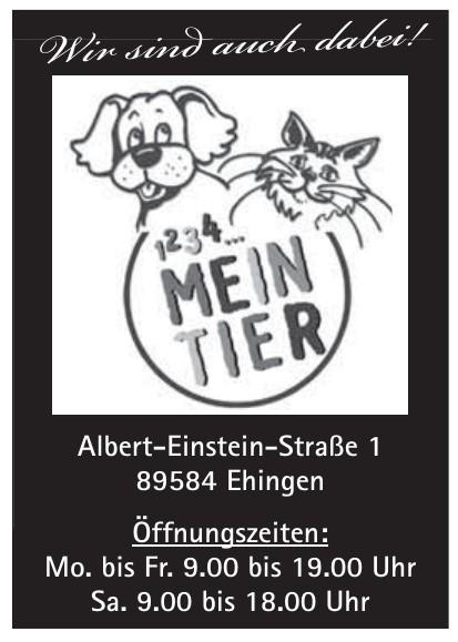 1234 Meintier
