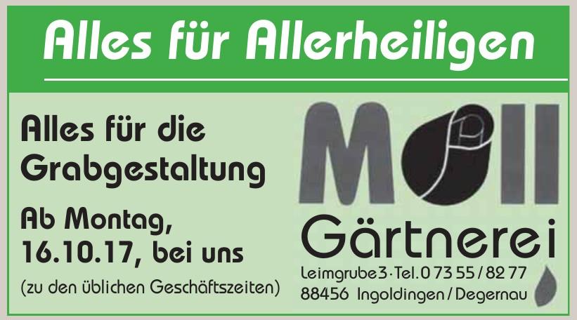 Gärtnerei Moll