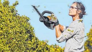 Akku-Technologie findet im heimischen Garten Anwendung